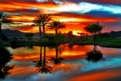 Golden Slumbers (oybay) Tags: autumn trees sunset orange reflection fall water weather yellow clouds palms mirror golden pond cloudy stormy palm palmtrees monsoon soe vistancia mywinners abigfave anawesomeshot frhwofavs