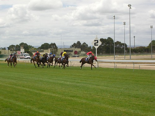 Coming into the Home Straight - Race 1 - Cranbourne Racing Christmas Carnival