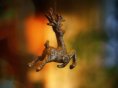 rendier (Moon over Belgium) Tags: christmas glitter reindeer gold bokeh explore ornament sparkling hbw bokehlicious
