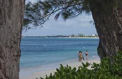 Seven Mile Beach... Grand Cayman (Banjo Eyes) Tags: grandcayman celebritycruise dec08