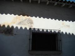 Archivo Tlacotalpan - Agosto 2008 (5)