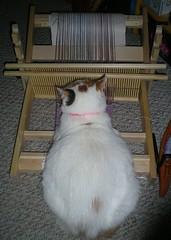 Anna Weaving