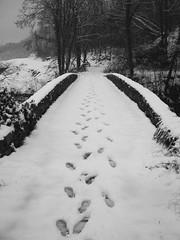 Ponte Orme (tommy_flickr) Tags: bridge bw white black italia liguria medieval ponte bianco medievale 2009 nero epifania nevicata levanto carrodano snowitaly