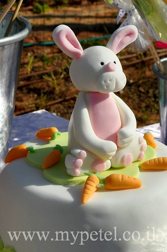 Bunny Cake ~*~ עוגת ארנב