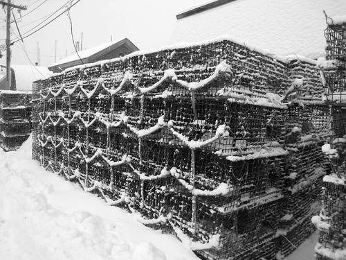 Black & White Lobster Traps