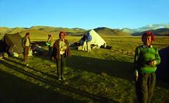 Friends who made it possible (reurinkjan) Tags: 2002 yak nikon tibet everest dri tingri jomolangma tibetanlandscape lammala janreurink norrdzi བོད། བོད་ལྗོངས།