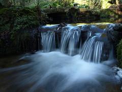 White Water at Newstead Abbey (DaveKav) Tags: uk greatbritain england white water waterfall stream unitedkingdom britain olympus gb nottinghamshire newsteadabbey newstead e510 fourthirds japenesegardens