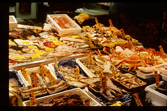 Seafood Feast (wah8888) Tags: fish tokyo market tsukiji leisure ektachrome