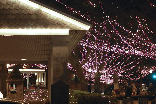 St. Auggie's Lights 03