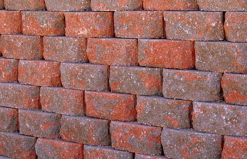 stone wall 3 Oct 2005  IMG_1965