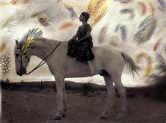 Epiphany Of Cosmic Consciousness (ElenaRay) Tags: travel horse woman white bird proud spirit flight goddess feathers royal divine journey mind spiritual pure royalty consciousness equine alchemy evolve archetype purity virginal