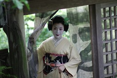 The Willow and Pink (Marie Eve K.A. (Away)) Tags: woman green japan lady canon eos kyoto f14 85mm arashiyama maiko geiko geisha  kimono  earlysummer planar miyagawacho  kanzashi   geigi      canoneoskissx2 satono  atelieryumeyusai ochayakawahisa
