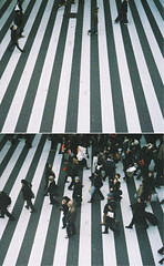 (bobby stokes) Tags: film japan rollei japanese diptych grain natura 1600  zebra fujifilm osaka analogue crosswalk zebracrossing urbanlife rollei35 fujicolor natura1600 rollei35s fujinatura1600 fujifilmnatura1600 fujicolornatura1600