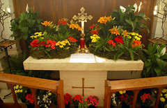Maundy Thursday (97) (Chris Gent) Tags: flowers orlando cross cathedral florida altar anglican episcopal lent holyweek maundythursday holygarden thecathedralchurchofstluke