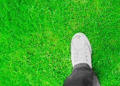 the foot in the Green (Mexitaliano) Tags: verde green pie star all vert erba jeans pasto converse prato piede inglese
