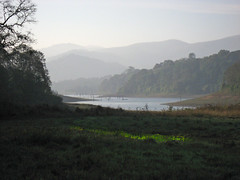 At the Dawn of The World (rimawa) Tags: india kerala thekkady inde southindia kumily periyar periyarnationalpark fpg earthasia kumilynationalpark rimawa