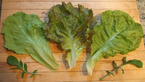 three lettuce leaves
