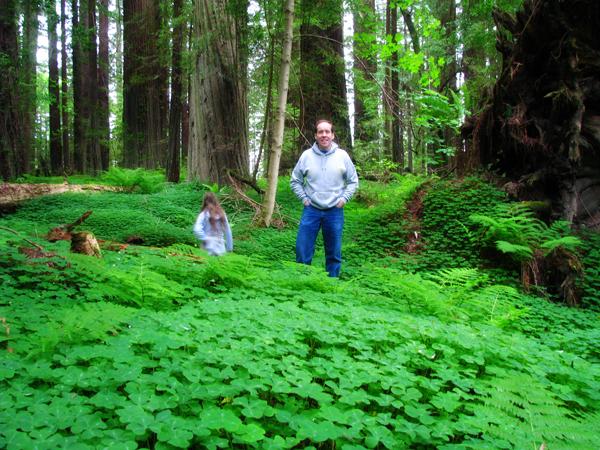 craig's forest