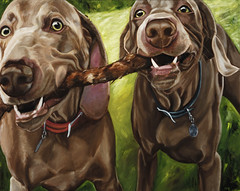 . ludwig & leopold playing stick tug~of~war . painting (saikiishiki) Tags: portrait pet playing silly cute art love painting fun funny play sweet weimaraner anji ludwig weimaraners omoshiroi leopold squidoo weims thelittledoglaughed tillemans anjitillemans weimaranerpainting weimaranerpaintingcom weimaranerart