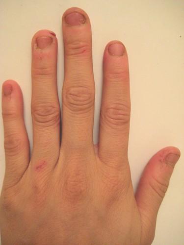 cook's hands