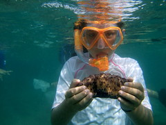 Lauren with a Chocolate Chip Sea Cucumber