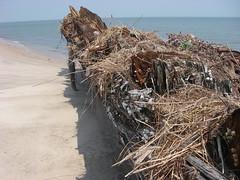 IMGP0137 (paulsyak) Tags: kayak lewes delawarebay beachplumislandshipwreck