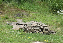 Wall stones from the woods