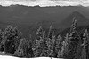 Mt_Rainier_6014 (absencesix) Tags: travel trees sky bw plants snow mountains nature weather clouds iso100 washington nationalpark unitedstates july noflash mountrainiernationalpark northamerica 2008 locations locale 70mm 2470mm manualmode canoneos30d geocity camera:make=canon exif:make=canon exif:iso_speed=100 exif:focal_length=70mm july262008 hasmetastyletag naturallocale summer2008travel selfrating2stars 1400secatf80 geostate geocountrys exif:model=canoneos30d camera:model=canoneos30d exif:lens=240700mm exif:aperture=ƒ80 subjectdistanceunknown mountrainierwa07262008
