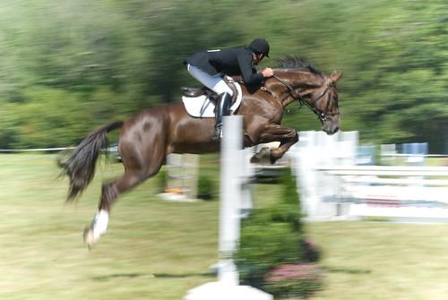 Myopia Horse Show 01