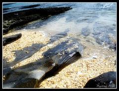 (Martha MGR) Tags: azul mar vernissage paisagens oceano mmgr marthamgr reservaespecial 4msphotographicdream 3msroyalflowers 2msroyalstation marthamariagrabnerraymundo marthamgraymundo