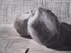 Charcoal Still Life (Mariel)