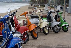 Vespa - 8 girls with the beach of Nha Trang in  background (Vespa Travel) Tags: travel reisen vespa scooter vietnam roller scooters oldtimer rollers dalat tours sprint hue saigon nhatrang muine vbb vintagevespa vintagebikes vespatrip vietnamreisen