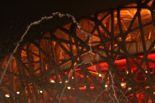 Bird's Nest (by niklausberger)