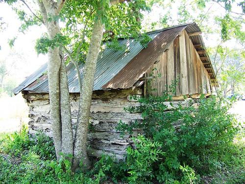 Saffold Property