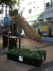 Wicker Shoe