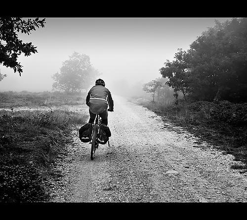 Buscando entre la niebla