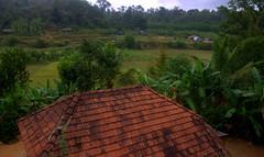 View of the camp (CosmicDust) Tags: karnataka coorg madikeri civetcreek