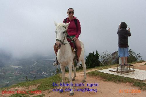 4293 Khac'h nuoc ngoai tren LangBiAng by you.