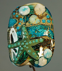 turquoise starfish front