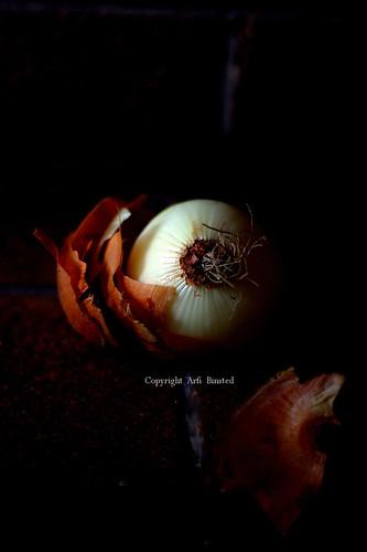 onion in black
