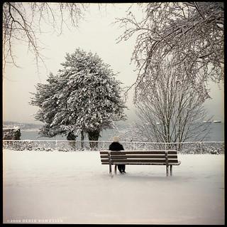 Pt Grey Park #02