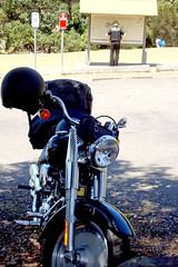 hog (robynejay) Tags: beach nsw garie royalnationalpark gariebeach stephanrobyn