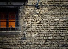 La finestra de l'infern (ester68) Tags: barcelona window ventana hell finestra smrgsbord infierno infern carrermontcada