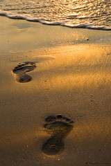 A walk to remember . . . . (soumitra911) Tags: sea sun reflection feet beach sand remember walk footprints footsteps maharashtra seashore kokan seasand dapoli a soumitra inamdar ladghar soumitra911 flickrestrellas tamastirtha drushtikon2009