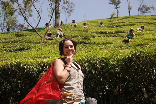 India: Munnar