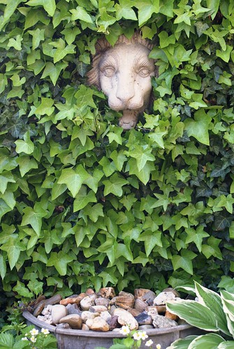 green wall with lion that can spit water