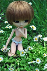 Nature | Pullip Nina