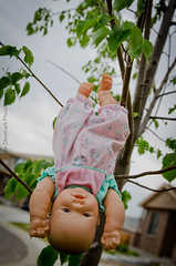 untitled (83 of 382).jpg (Annabelle.D.) Tags: nursery rhyme odc2
