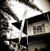 Hemingway's Window (J.T.R.) Tags: film holga tmax keywest hemingway harrymorgan conchrepublic palabra tohaveandhavenot queenconch jasonramsay2008