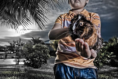 .our newest member. (dubrillantes) Tags: sky color clouds photoshop portraits guineapig 3d saturated surreal dennis strobe brillantes supershot strobist superaplus aplusphoto theperfectphotographer unrealphotography